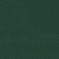 Зеленый (V13)