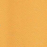 Желтый (V26)