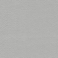 Светло-серый (V28)
