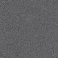 Темно-серый (V2)